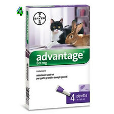 BAYER ADVANTAGE 80 mg per gatto oltre 4 kg 4 pipette ANTIPULCI ANTIPARASSITARIO