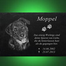 HUNDEGRABSTEIN Tiergrabstein Grabmal Mischling Hund 043►Text Gravur◄ 30 x 20 cm