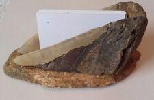 "5.82"" & 5.52""  Megalodon Shark Tooth fossil - CARD HOLDER"