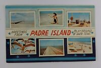Postcard Greetings from Padre Island Playground of South Texas Banner