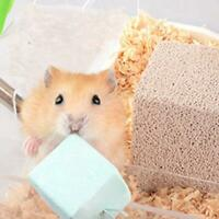 Hamster Rabbit Rat Guinea-pig Calcium Mineral Chew Cube Teeth Grinding Toy Gift