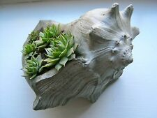 Shell Planter, Painted Concrete Flower Pot, Ocean-Themed Home Decor, Shell Plant