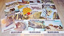 LE MONDE DES ANIMAUX SAUVAGE !   jeu 16 photos cinema lobby cards 1967