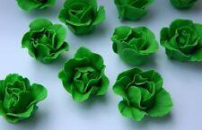 12 edible 3D LETTUCE VEGETABLES RABBIT cake topper decoration garden CUPCAKE
