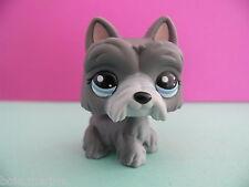 petshop chien westie gris grey scottie dog (blythe) N° 1860