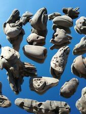 """Driftwood for Arts and Crafts 200+ assorted pcs, 3"""" to 12"""" N. Natural Wood"""