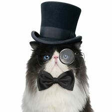 Bow Tie For Cats