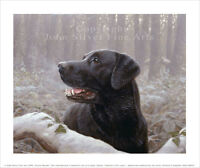 BLACK LABRADOR RETRIEVER. SIGNED & NUMBERED LTD EDITION PRINT by JOHN SILVER. BA