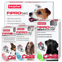BEAPHAR FIPROtec SPOT ON CAT DOG FLEA TICK TREATMENT Solution S M L XL Fipronil