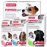 BEAPHAR FIPROtec SPOT ON CAT DOG FLEA TICK TREATMENT Solution S M L XL Fipronil