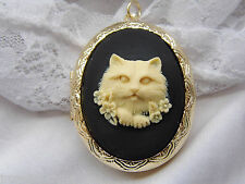 CAMEO CAT KITTY BLACK WHITE cremation urn Cameo Pill Box Necklace Locket memoria