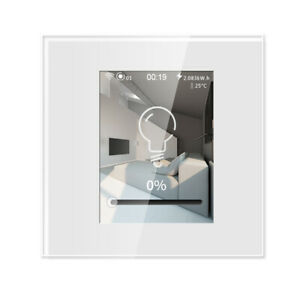 Intelligent Color LCD Touch Dimmer Smart Switch, Real Smart Living,WiF,APP/Voice
