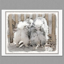 6 Keeshond Butts at the Gate Blank Art Note Greeting Cards