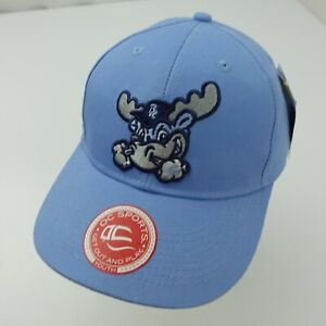 Wilmington Blue Rocks Minor League Ball Cap Hat Adjustable Baseball Youth