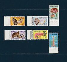 Maroc  coquillages et crustacés  de 1965  num: 488/93  **