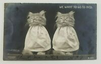 Postcard RPPC Two Kittens Cats Want to go to Bed 1907