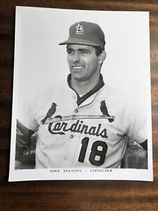 RARE 1970's -80' St Louis Cardinals Baseball TEAM ISSUE PRESS PHOTO MIKE SHANNON