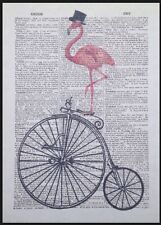 Vintage Pink Flamingo Penny Farthing Print Dictionary Page Wall Art Picture Bike