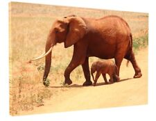 AFRICAN ELEPHANT & BABY CANVAS PICTURE PRINT WALL ART CHUNKY FRAME LARGE 1788-2