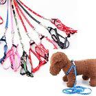New Pet Dog Prints Bone Puppy Harness Belts Leash Set Leading Leashes 3.94 feet