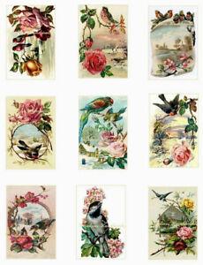 """Vtg Birds Floral Repro Cotton Fabric Crazy Quilt Blocks (9) Images @ 2X3"""" Each"""