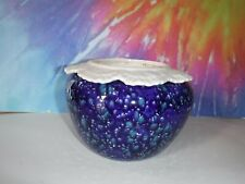 Large Blue With White And Green African Violet Ceramic Pot/Planter