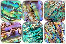 Abalone Paua Drink Coasters x 6 Non fading