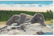 Gotto Geyser, Yellowstone National Park, Unused Linen Vintage Postcard