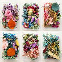 1 Box Bulk Mixed Dried Flowers DIY Epoxy Resin Filling Aromatherapy Home Art Acc