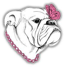 Bulldog Dog Girl Car Bumper Sticker Decal 5'' x 5''