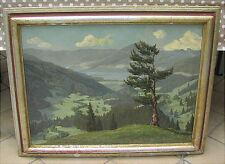 Altes Ölgemälde Schwarzwald Hiller Baumann