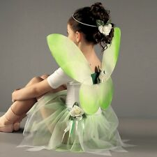 Green Fairy Set - Tinkerbell Fancy Dress - Ballet Dance Outfit