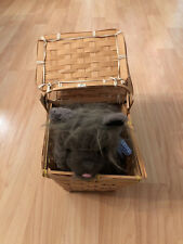 Dorothy Toto Dog Wizard of Oz with Basket Stuffed Animal Halloween Costume Prop