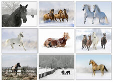 Horse Christmas Cards - Pack Of Nine