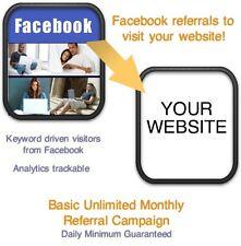 Website Visitors- 30 days/12,000 Facebook Referrals/Visitors to your website