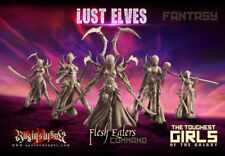 Raging Heroes 23905 Flesh Eaters Command [Fantasy] (Lust Elves) Female Dark Elf