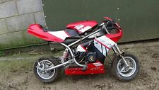 Mini moto/mini moto/tornado mini moto/pocket bike
