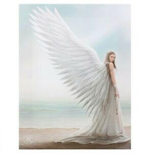 Spirit guide Angel Fairy wall canvas by artist Anne Stokes  25cmx19cm Gothic