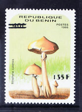 More details for benin 2000 michel 1247 1996 40fr fungi surcharged 135fr - u/m. cat 200 euros