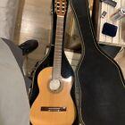 d'agostino guitar for sale