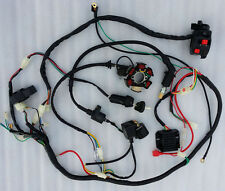 GY6 150cc QUAD ELECTRIC Stator Magneto Coil CDI Regulator Wire Loom Harness zu
