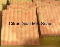 CITRUS - Goats Milk Soap Handmade 3 oz. Bar Hemp Oil All Natural Pain Relief