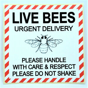 LIVE BEES WITH CARE Labels  Stickers LARGE 100x100mm Zoo Vets Pets PPI-LIV-BE