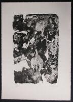 """JOHANNES SCHREITER , 1930 BUCHHOLZ . RADIERUNG ,"""" STRUKTURVEGETATION """"1960 sign."""