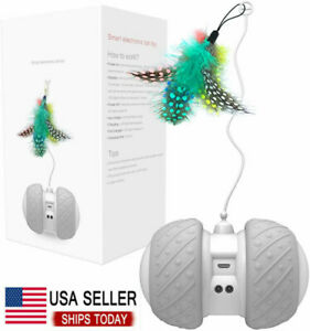 Automatic Cat Toys Interactive Cat Feather Toys, Pet Electric Toys for Indoor