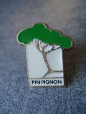 PINS ARBRE PIN PIGNON