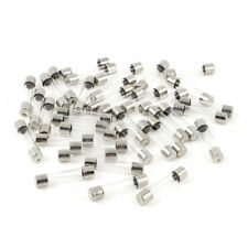 40 Pcs 250 Volts 4Amp Fast Blow Type Glass Tube Fuses 6 x 30mm Silver Tone Clear