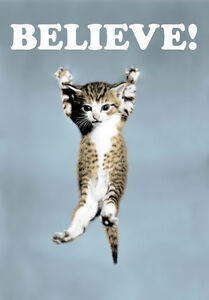 BELIEVE! - Cat Poster from Lego Movie - A3, A2