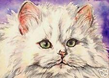 Fluffy White Cat  Kitten   O/E Print   ACEO  by Vicki