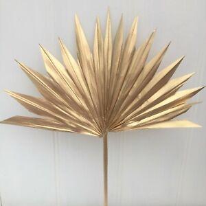 1 Small Bright Gold Dried Sun Spear Leaf,CAKE TOPPER Letterbox Sun Palm